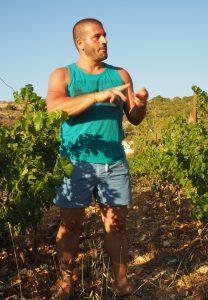 Maher Harb inmitten seiner Reben im Libanon