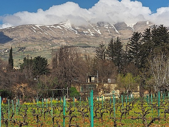 Bekaa Domaine des Tourelles Libanongebirge