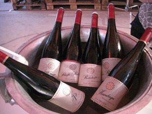 Weißweine vom Weingut van Volxem, Saar, Jahrgang 2015