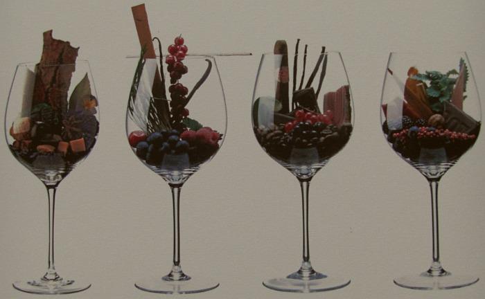 Visuelle Darstellung von Aromen im Wein in Form von Früchten und Kräutern