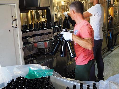 Leere Flaschen einstellen und Wein abfüllen
