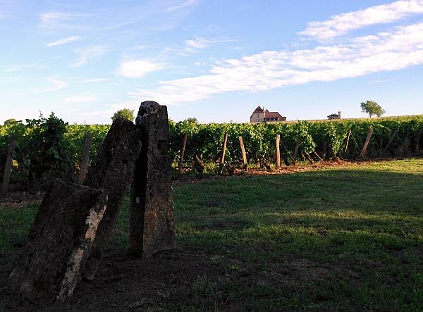 Französischer Wein Verwechslungen Lernen Dominoeffekt