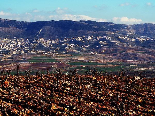 Bekaa schneebedeckte Golanhöhen Château Kefraya