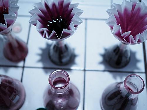 Labor Weingut Proben Analyse