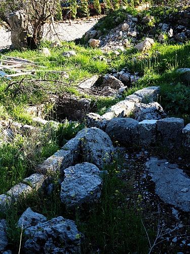 Weinbücher Weinbau Libanon Bekaa Ebene Römer Kelter antik