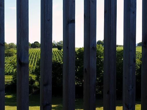 Weinprobierzentrum La Caborde Jura Orbagna