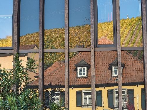 Statistik Weinbaugebiete Deutschland