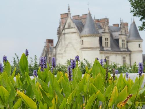 château amboise loire schloss