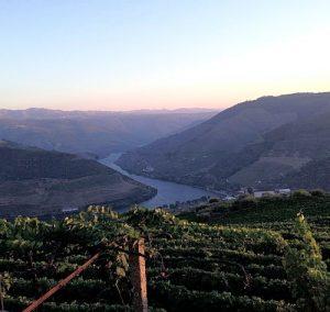 Douro Pinhao Weinbau Portugal Portwein