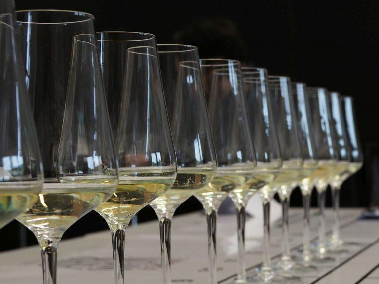 Weinprobe Gläser Weißwein