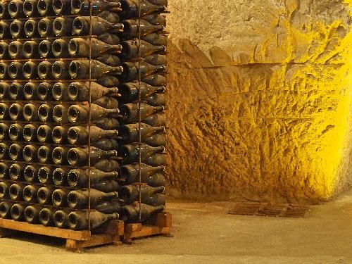 Wein-Bücher Reims Champagner Kreidefelsen Keller